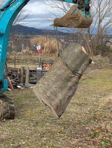 W800Q75 IMG 8467 1 228x300 - ヒラタケの原木作り