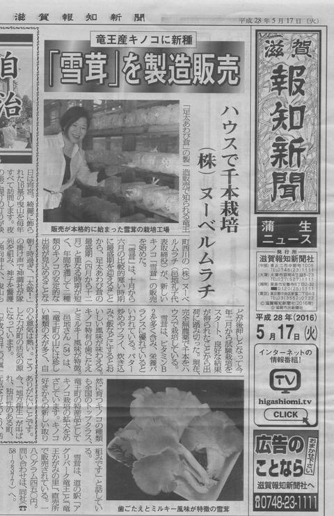 53ffd9d4 s - 滋賀報知新聞に「雪茸」が掲載されました!