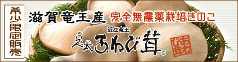 f88b9335 s - 滋賀県竜王町ふるさと納税謝礼品「足太あわび茸」ふるさとチョイス